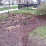 Smith Park Advisory Council - Earth Day 2014 (34)