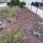 Smith Park Advisory Council - Earth Day 2014 (37)