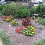 Smith Park Advisory Council - Earth Day 2014 (45)