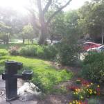 Smith Park Advisory Council - Earth Day 2014 (46)
