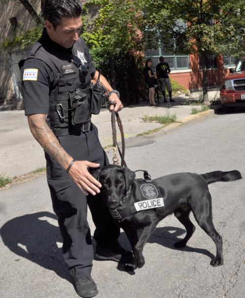 Smith Park Advisory Council West Town Dog Parade Chicago Police Department